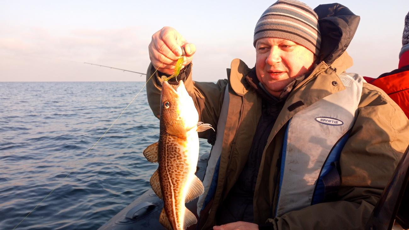 Где искать треску в Белом море?